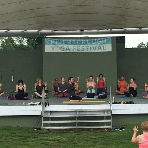 Yoga Fest 2017